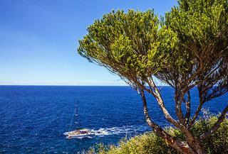 Blick an Bäumen vorbei auf's Meer