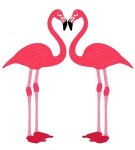 zwei Flamingos gezeichnet bilden mit ihren Schnäbeln ein Herz