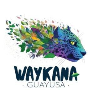 Logo mit Leopardenkopf in Regenbogenfarben