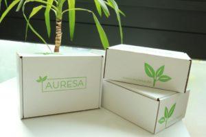 Teekartons vor einer Teepflanze