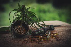 Hanf, Samen und Kapseln