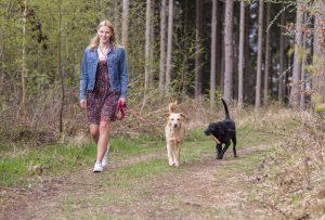 Frau spaziert mit zwei Hunden durch den Wald