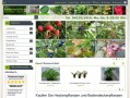 BaumschuleDirekt - Pflanzen direkt aus der Versandbaumschule kaufen