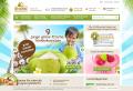 Bio-Kokosöl für gesunde Ernährung und Wellness