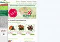 Blumenstrauß bestellen