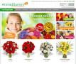 Blumenversand | Blumen verschicken | Blumenladen | Blumengeschäft | Blumen onli