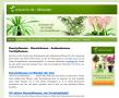 Kunstpflanzen - künstliche Pflanzen