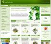 Kunstpflanzen Shop