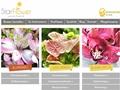 Online Blumenversand und Blumenabo StarFlower