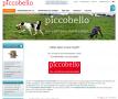 piccobello Hundewindeln für inkontinente Rüden und Hündinnen